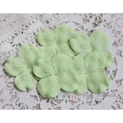 Цветы гортензии, цвет нежно-зеленый, 50мм, 10 цветочков