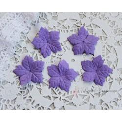 Пуансетия, цвет фиолетовый, 40мм, 10шт