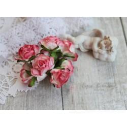 Дикая роза, цвет белый с розовой окантовкой, 3см, 1шт