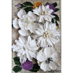 Набор пуансетий, 5см, цвет белый, 5шт.