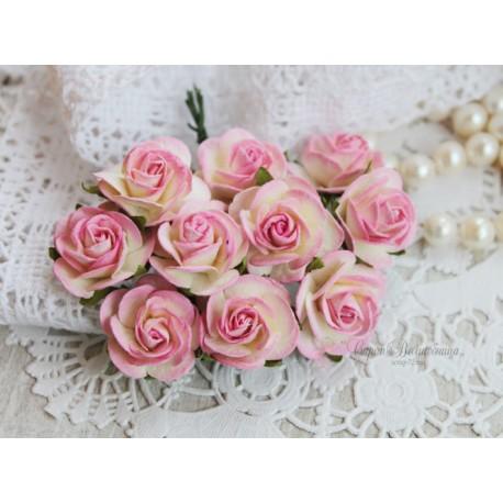 Роза Мальбери, цвет сливочный с нежно-розовой окантовкой, 25мм, 1 цветок
