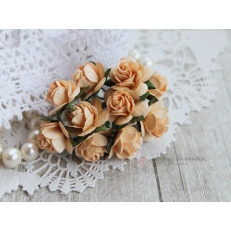 Роза Мальбери, цвет персиковый, 20мм, 1 цветок