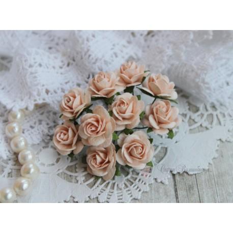 Роза Мальбери, цвет бледный персиковый, 20мм, 1 цветок