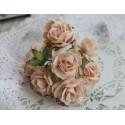 Дикая роза, цвет персиковый, 3см, 1 цветок