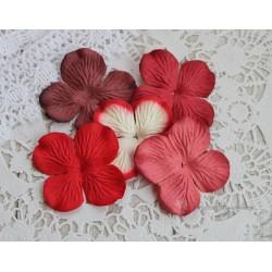Набор гортензий, оттенки красного, 5 цветочков
