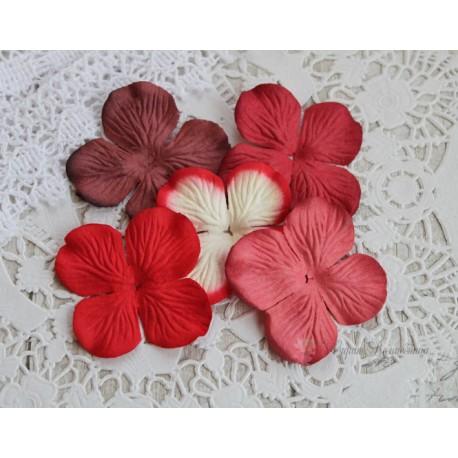 Набор гортензий, оттенки красного, 50мм, 5 цветочков