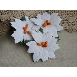 Пуансетия, цвет белый, 1шт
