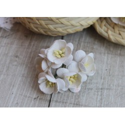 Цветы вишни, цвет белый, 25мм, 1 цветок