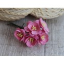 Цветы вишни, цвет розовый, 25мм, 1 цветок