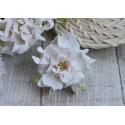 Гардении кудрявые, цвет белый, 60мм, 1 цветок