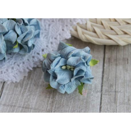 Гардении кудрявые, цвет голубой, 35мм, 1 цветок