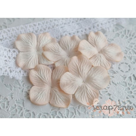 Цветы гортензии, цвет нежный персик, 10 цветочков