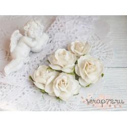 Дикая роза, цвет сливочный, 3см, 1 цветок