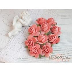 Роза Мальбери, цвет коралловый, 1 цветок