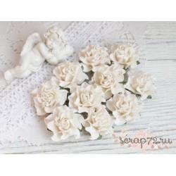 Роза Tuscany, цвет белый, 30мм, 1 цветок