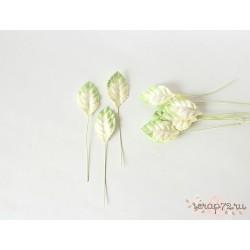 Листочки, цвет белый с переходом в зеленый, 4.5см, 10шт