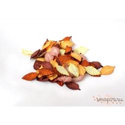 Листья без стебельков, цвет Коричневый темный микс, 4.5см, 10шт