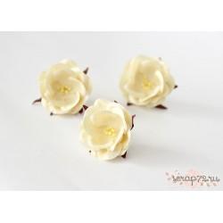 Дикие розы, цвет Молочный, 4.5см, 1шт