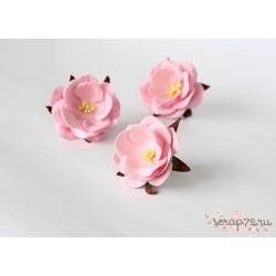 Дикие розы, цвет Светло-розовый, 4.5см, 1шт