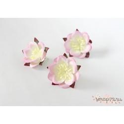 Сакура, цвет Белый-светло розовый, 4.5см, 1шт