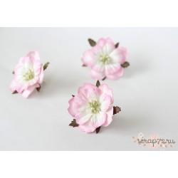 Пион, цвет Светлый розовый-белый, 6см, 1шт