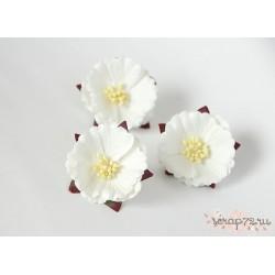 Китайский пион, цвет Белый, 5см, 1шт