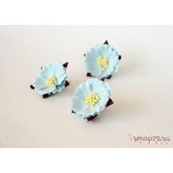 Китайский пион, цвет Голубой, 5см, 1шт