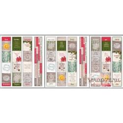 """Карточки """"Botany winter""""  (англ.+русск.), набор из 8 полос, 5*30см"""