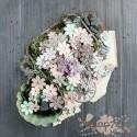 Цветы Salvage District от Prima Marketing, 100шт