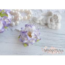 Гардении кудрявые, цвет сиреневый, 35мм, 1 цветок