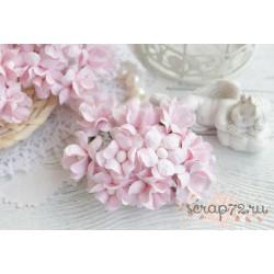 Лютик кудрявый, цвет светло-розовый, 2см, 1 цветочек