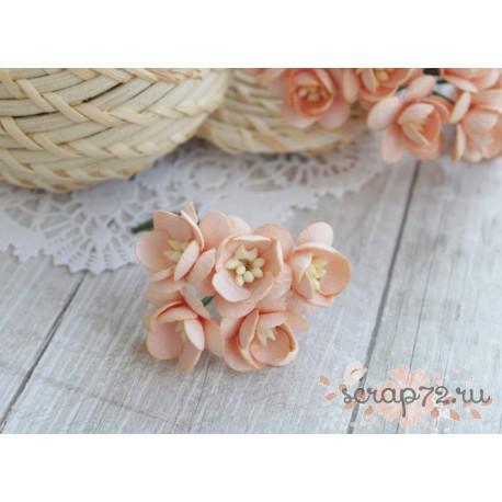 Цветы вишни, цвет персиковый, 2.5см, 1цветок