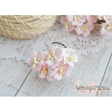 Цветок яблони, цвет светло-розовый, 2см, 1 цветочек