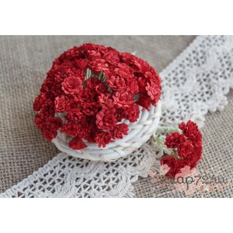 Гипсофила, цвет красный, 10мм, 10 цветочков