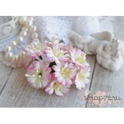 Маргаритка, цвет белый с нежно-розовой окантовкой, 25мм, 1шт