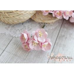 Цветы вишни, цвет нежно-розовый, 2.5см, 1цветок