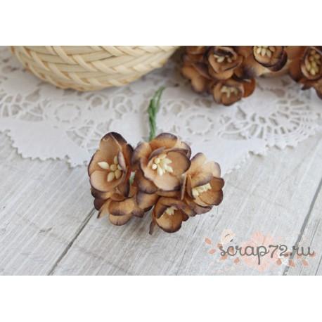 Цветы вишни, цвет коричневый, 2.5см, 1цветок