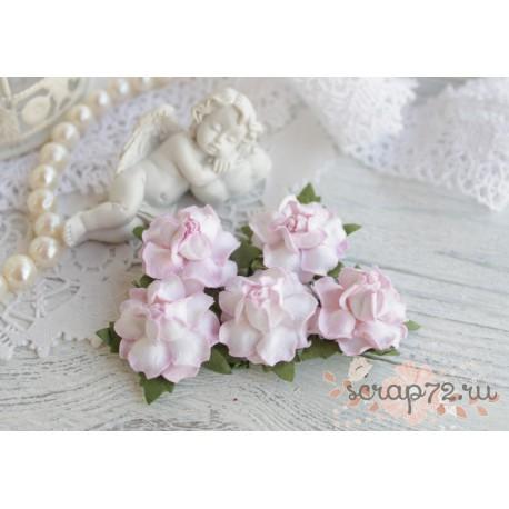 Роза, цвет нежно-розовый, 25мм, 1 цветок