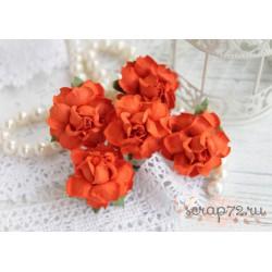 Роза, цвет красный 35мм, 1 цветок