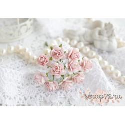 Роза Мальбери, цвет светло-розовый, 15мм, 1 цветок