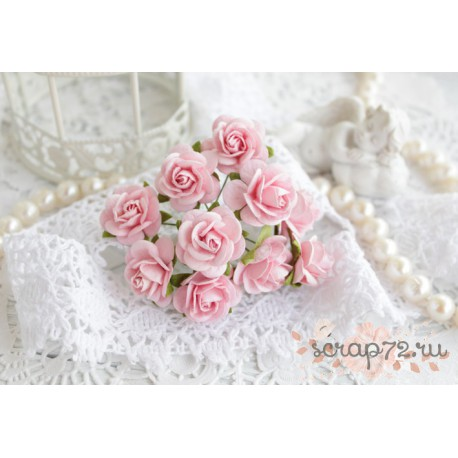 Роза Мальбери, цвет нежно-розовый, 20мм, 1 цветок
