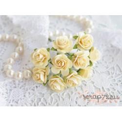 Роза Мальбери, цвет светло-желтый, 1 цветок