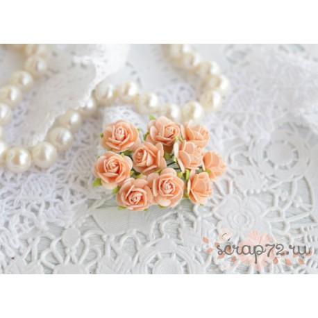 Роза Мальбери, цвет персиковый, 1 цветок
