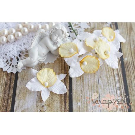 Орхидея, цвет белый с желтым лепестком, 4 см, 1шт.
