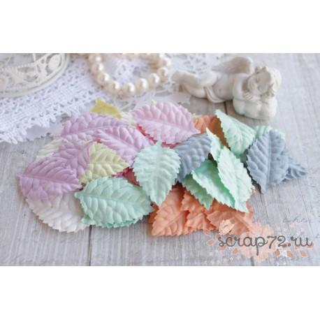 Листочки розы, цвет пастельный микс, 4*2.5см, 10шт