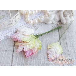 Листочки ромашки, цвет сливочный с переходом в розовый, 3.5*2.5см, 10шт