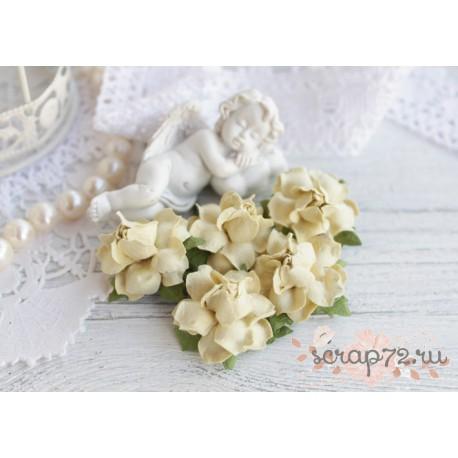 Роза, цвет кремовый, 25мм, 1 цветок