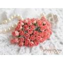 Роза кудрявая в бутонах, 8-10мм, цвет коралловый, 1шт.
