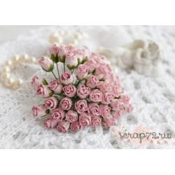 Роза кудрявая в бутонах, 8-10мм, цвет лиловый, 1шт.