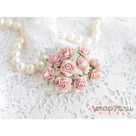Роза Мальбери, цвет нежно-розовый, 15 мм, 1 цветок